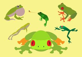 Colección de ranas arbóreas verdes en vector