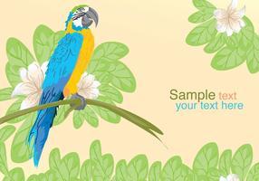Vektor papegoja Posing