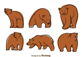 Vector d'ours