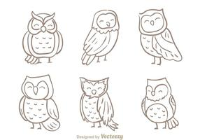 Hand Drawn Owl Vector