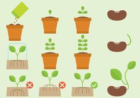 Ciclo de cuidado e plantas de vetores