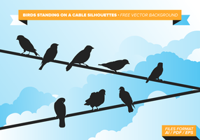 Binds Standing On A Cable vector