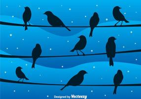 Vetor Bird On A Wire At Night