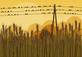 Pájaros en los alambres en otoño
