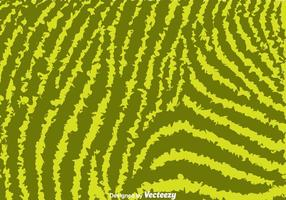 Green Zebra Print Background