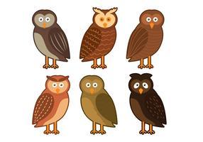Barn Owl Personaje Vector