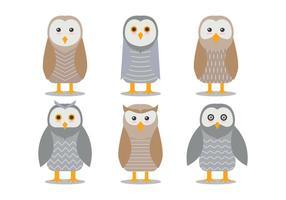 Barn Owl Vectores