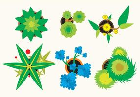 Various Plants Top View  vector
