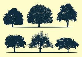 Eichenbaum Silhouette Vektoren