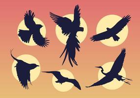 Fliegende Vögel