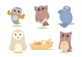 Barn Owl Vector Set