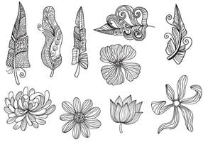 Flowers Feathers Vectors