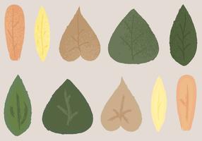 Vecteur feuilles libres