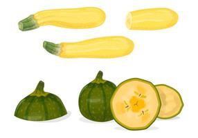 Vecteurs de zucchini verts et jaunes