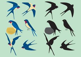 Colorful Swallows vector