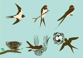 Swallows and the nests  vector