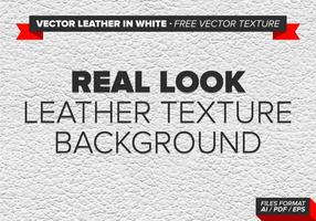 Vector Leather In White Free Vector Texture