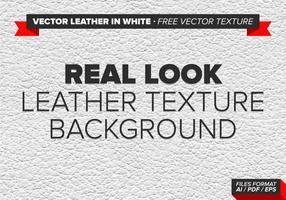 Vector Läder I Vit Gratis Vektor Textur