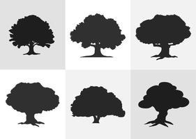 Ek träd silhuett