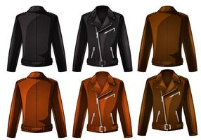 Cool jacket vector
