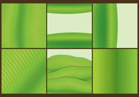 Banana Leaf Templates