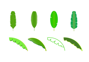 Free Banana Leaf Vector