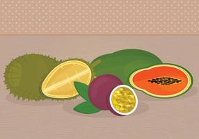 Illustrations vectorielles de fruits exotiques