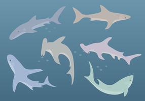 Vector tiburón libre