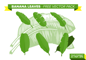 Paquet de vecteur libre de feuilles de banane