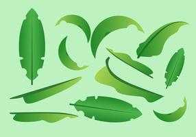 GRATIS BANANA LEAF VECTOR