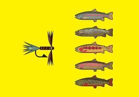 Flyga fiske pack 2