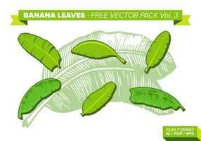 Folha de banana Free Vector Pack Vol. 3