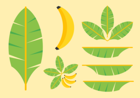 Free Banana Leaves Vector Pack