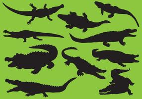 Gator Silhouettes vector