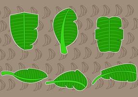 Vetores tropicais da folha de banana