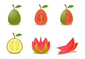 Gratis Guava Vector