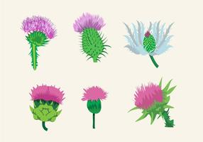 Beautiful Thistle vector