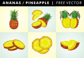 Ananas / Ananas Gratis Vector