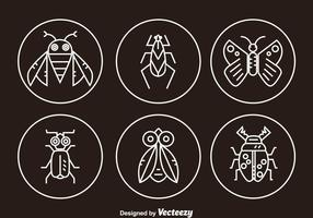 Insect Line Icons
