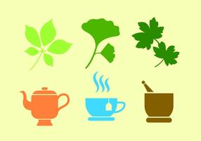 Set of Ginko Plant and Tea in Vector