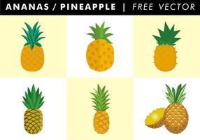 Ananas / Piña Vector Libre