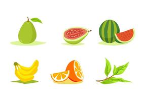 FREE FRUITS VECTOR