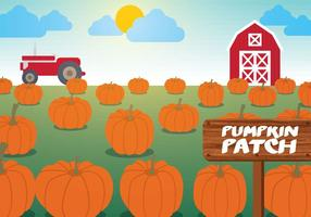 Pumpa Patch Vector