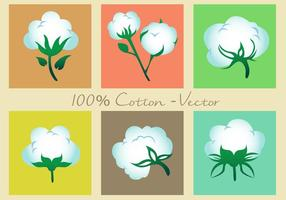 Icônes de vecteur de plantes en coton