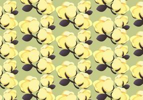 Planta de algodón libre 100% patrón Vector