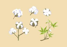 GRATIS COTTON PLANT VECTOR