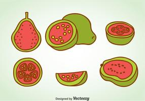 Guava Cartoon Vector