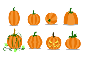 Free Pumpkin Patch Vector