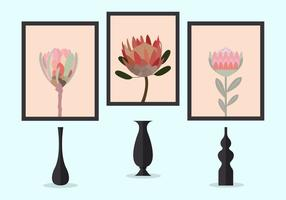 Vector Illustration of Protea Flowers