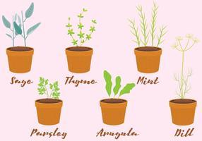 Vector hierbas en macetas